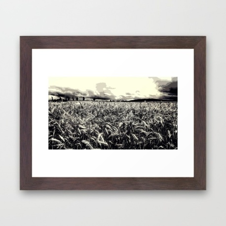 black-and-white-field-hk1-framed-prints