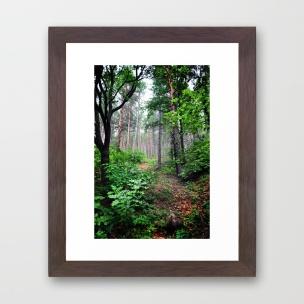 fairy-woods-nlb-framed-prints