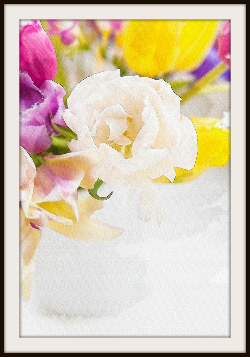 Spring flowers - webframe
