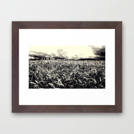 black-and-white-field-hk1-framed-prints